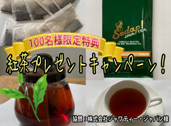 [無くなり次第終了]100名様限定『英語でTEA TIME』参加特典、紅茶をプレゼント‼